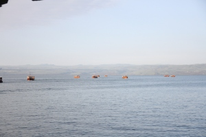 The fishing fleet returning at days end to Tiberius.