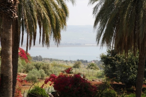View eastward from the Mount of Beatitudes.