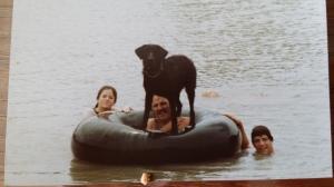 Bo. the black Labrador retriever, loved to play king of the inner tube - and he often won.