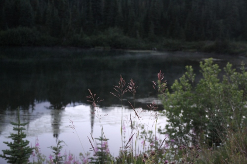 Mist rising off Reflection Lake about 5:30 am.  It was in the low 50's and not a cloud in the sky.