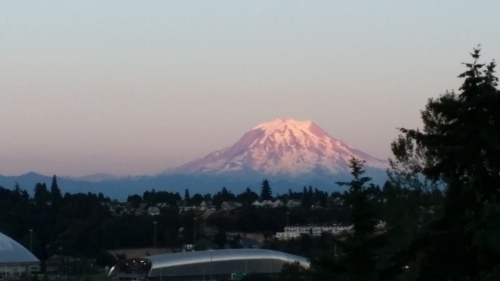 View from my hotel while in Tacoma.