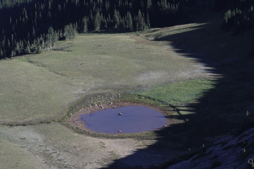 An unnamed lake beside the Wonderland Trail below the Burroughs Mountain Trail.
