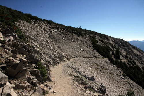 As I walked on the Sunrise Rim Trail here I realized a slip could easily result in a 1000 foot or more tumble.