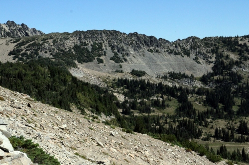 View toward Sourdough Ridge across the Sunrise meadows.