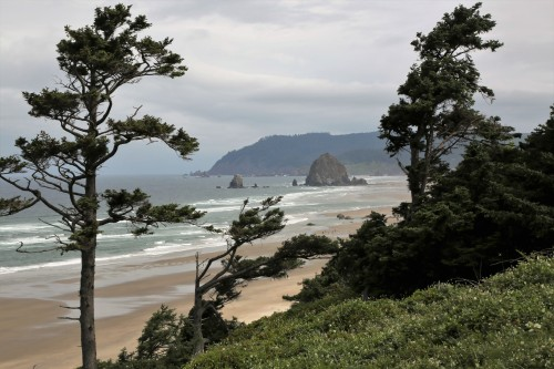 View of Haystack Rock from the south. These are called Sea Stacks. They are the harder rock that stands longer while the softer rock and soil is eroded by years of pounding surf, storms, and winds.
