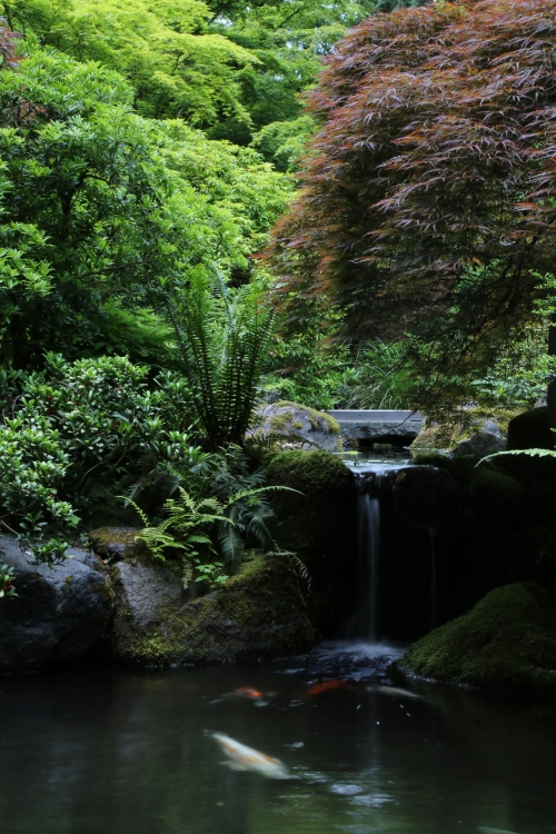 Falling water in the Japanese Garden in Portland