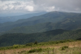 Roan Mountain - Fog and Rainbows-1-3