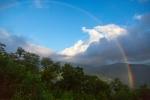 Roan Mountain – Fog andRainbows-11
