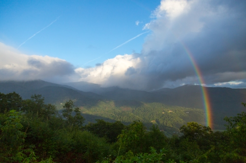 Roan Mountain - Fog and Rainbows-17