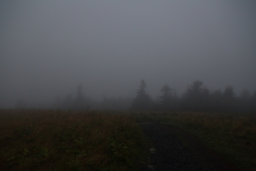Roan Mountain - Fog and Rainbows-2-4