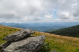Roan Mountain - Fog and Rainbows-3-2
