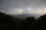 Roan Mountain - Fog and Rainbows-6