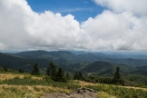Roan Mountain - Fog and Rainbows-7-2