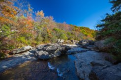 Pisgah National Forest-17
