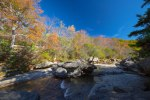 Pisgah National Forest-21