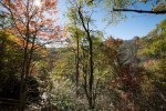 Pisgah National Forest-22