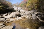 Pisgah National Forest-25