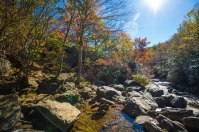 Pisgah National Forest-27