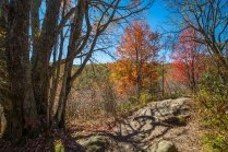 Pisgah National Forest-61