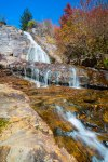 Pisgah National Forest-74