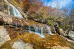 Pisgah National Forest-77