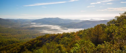 Morning fog burning off over the Cradle of Forestry in Pisgah National Forest
