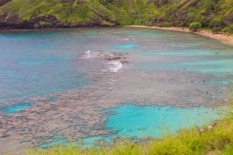 Diamond Head, Hanauma Bay, & Koko Head-46