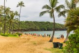 Diamond Head, Hanauma Bay, & Koko Head-47