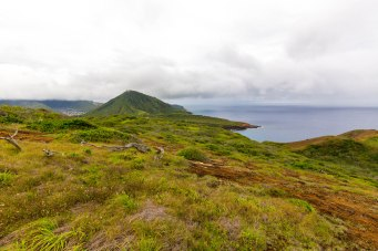 Diamond Head, Hanauma Bay, & Koko Head-65