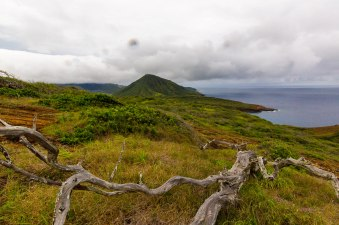 Diamond Head, Hanauma Bay, & Koko Head-68