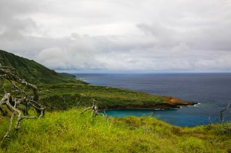 Diamond Head, Hanauma Bay, & Koko Head-73