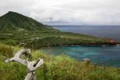 Diamond Head, Hanauma Bay, & Koko Head-80