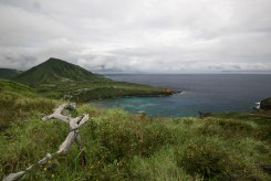 Diamond Head, Hanauma Bay, & Koko Head-81