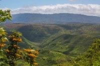 Kauai - Day 1-12