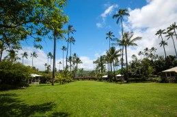 Kauai - Day 1-13