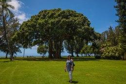 Kauai - Day 1-14