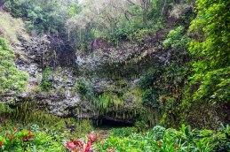 Fern Grotto.