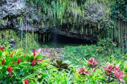 Weddings used to regularly be held inside the mouth of Fern Grotto.