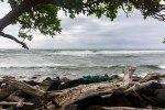 Kauai – Day 2Morning-16
