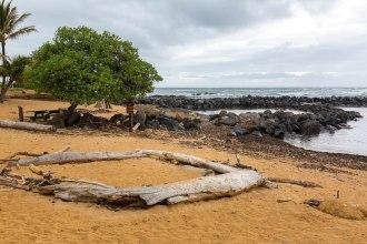 Kauai - Day 2 Morning-4