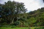 Ultimate Oahu CircleTour-139