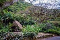 Better view of the Hawaiian Village.