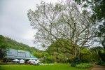 Ultimate Oahu CircleTour-151