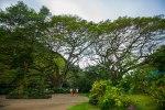 Ultimate Oahu CircleTour-153