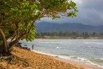 Ultimate Oahu CircleTour-161