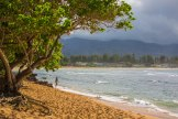 A beautiful afternoon for a stroll on the Oahu North Shore.