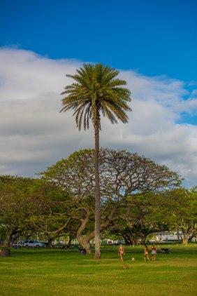 Ultimate Oahu Circle Tour-171